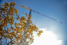 construction-industry-crane-leaves-1